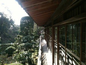 Porch with sliding doors  where we shared tea overlooking the garden...