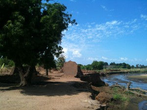 Washed out houses and the uprooted village tree