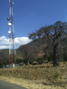 Old and New World - The Baobab Tree and the cell tower